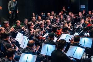「E大调合奏团」落力演出,奏出多首经典乐曲。